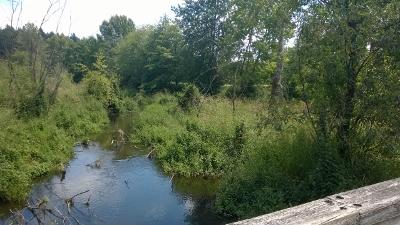 north creek from bridge