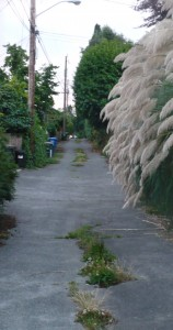 The alley stretches far