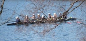 Rowers in an eight.